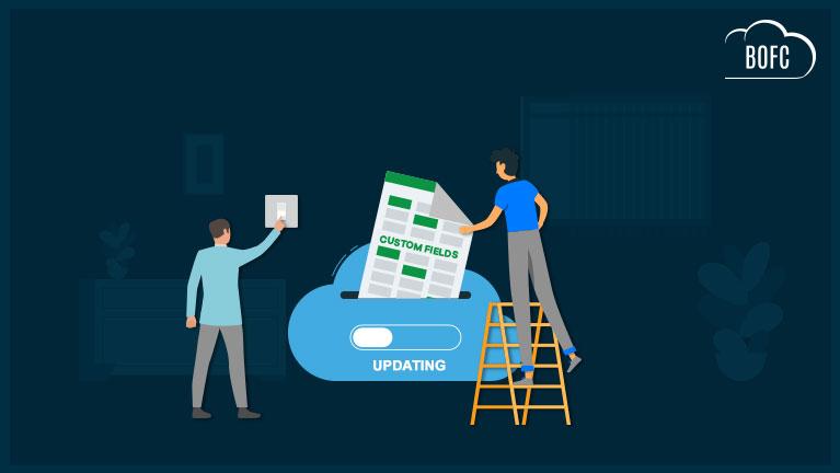 How-to-update-multiple-custom-fields-in-salesforce-in-few-click