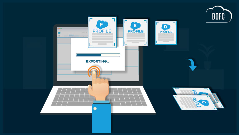 Export Multiple Profiles of Salesforce